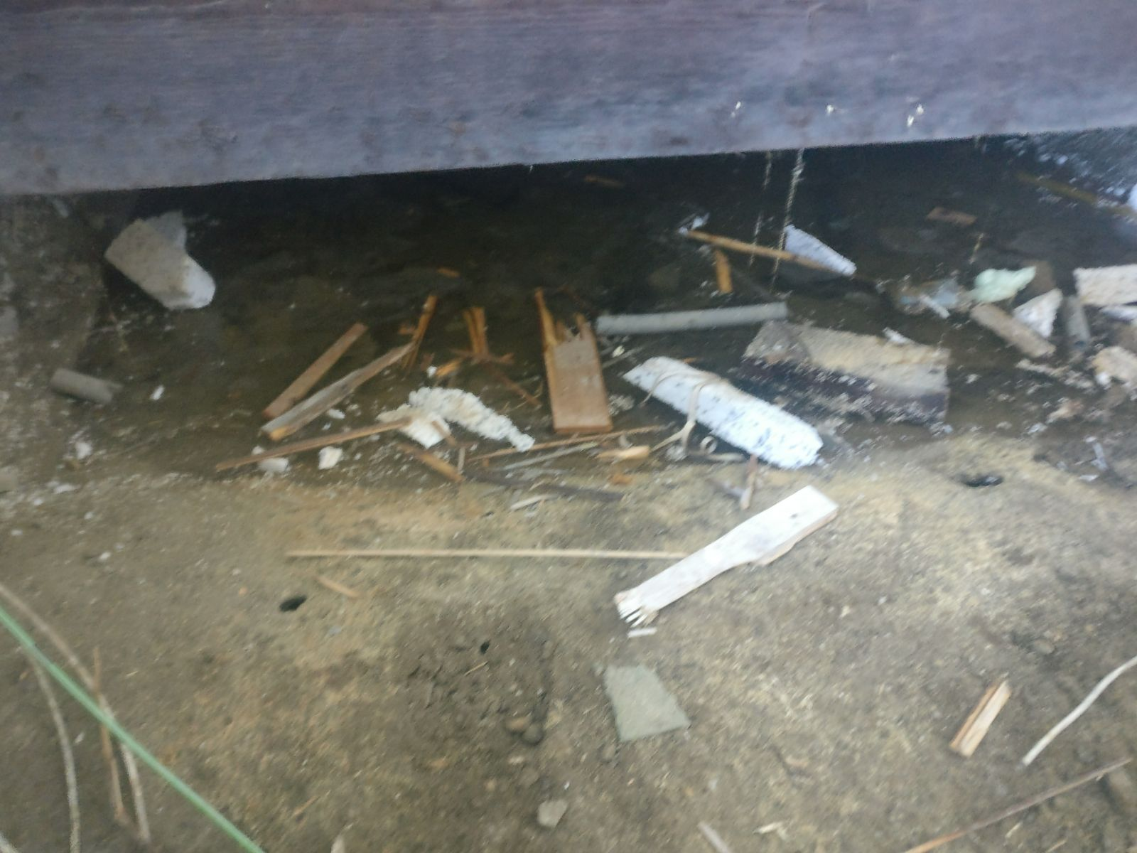 Voorkom ongedierte met een schone kruipruimte hoekstra